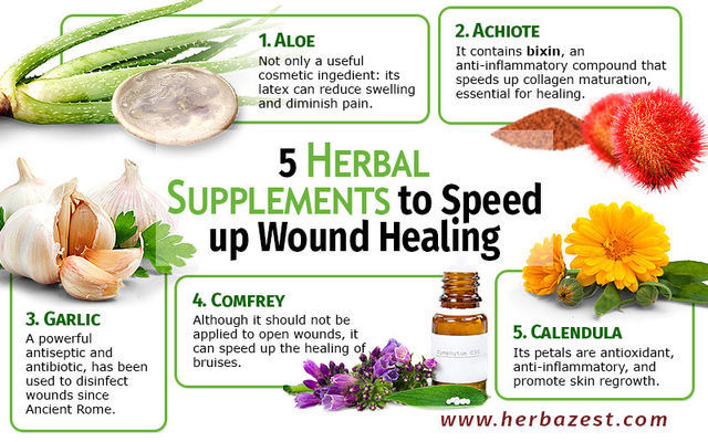 Healing Open Wounds With Herbs