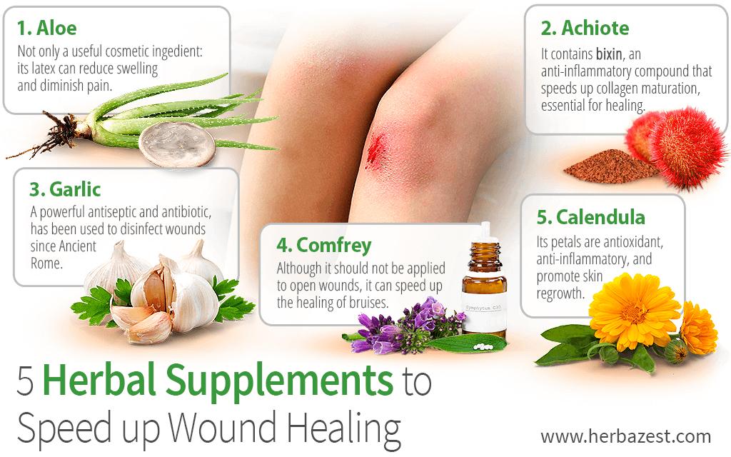 5 herbal supplements to speed up wound healing herbazest