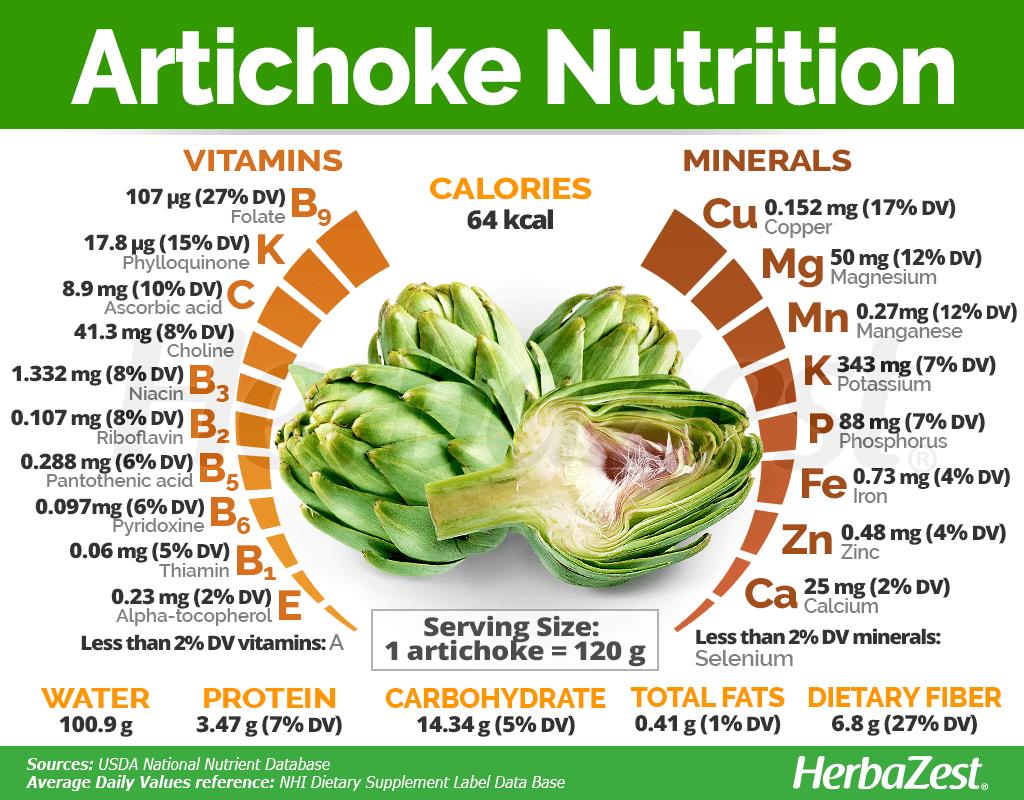 Artichoke Nutrition