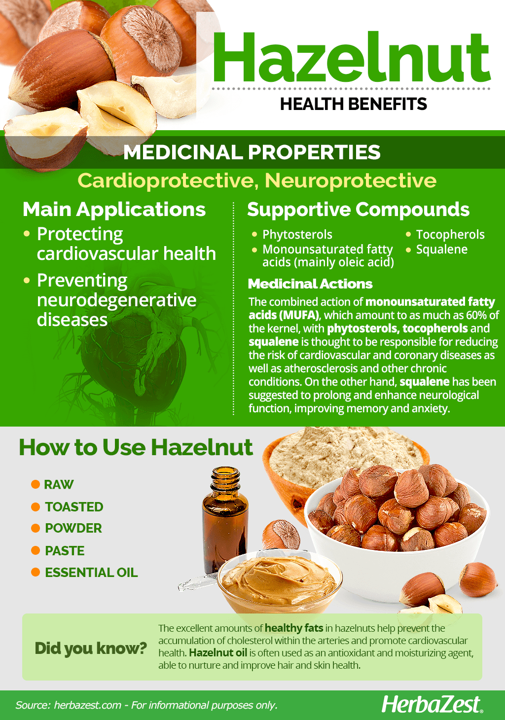 All About Hazelnut