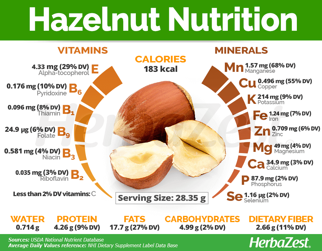 Hazelnut Nutrition Facts