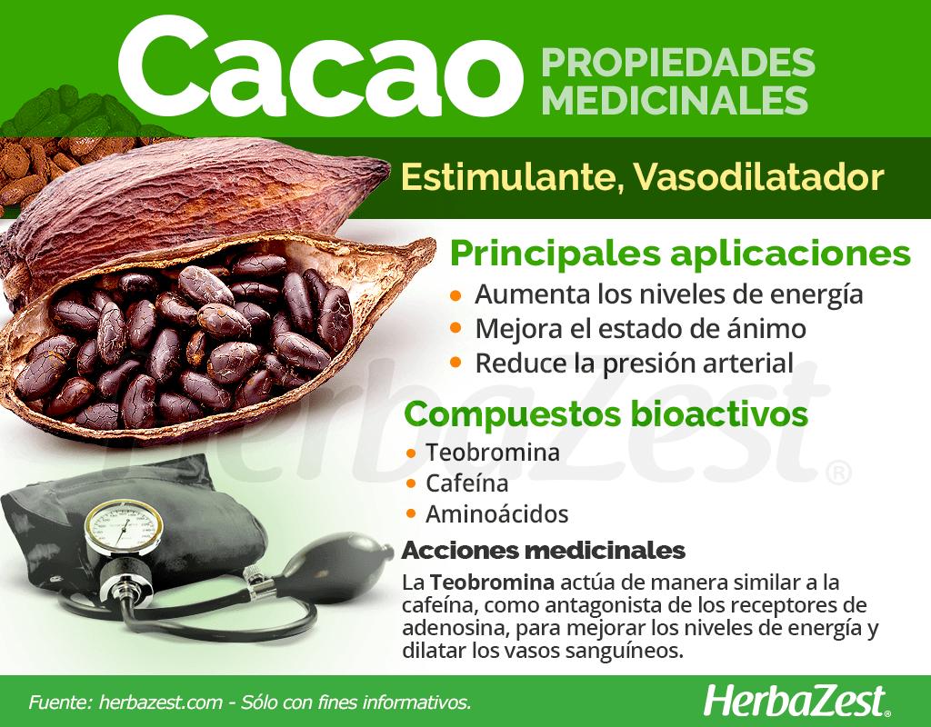Propiedades medicinales del cacao