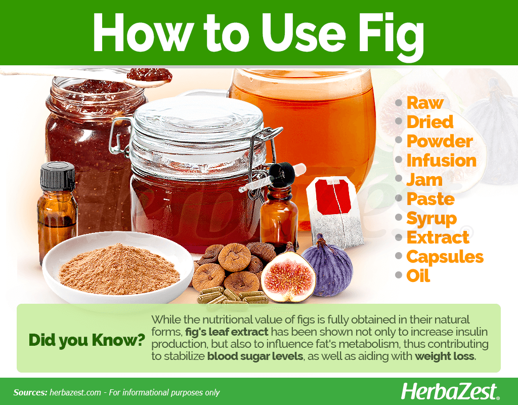 How to Use Fig