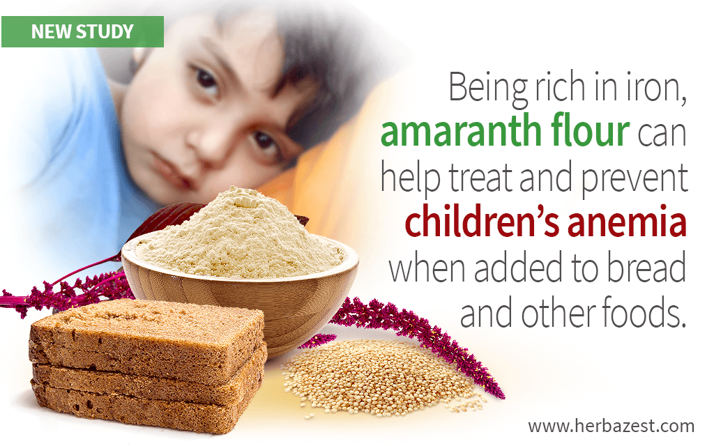 Amaranth Flour Bread Helps Reduce Anemia Prevalence in Children