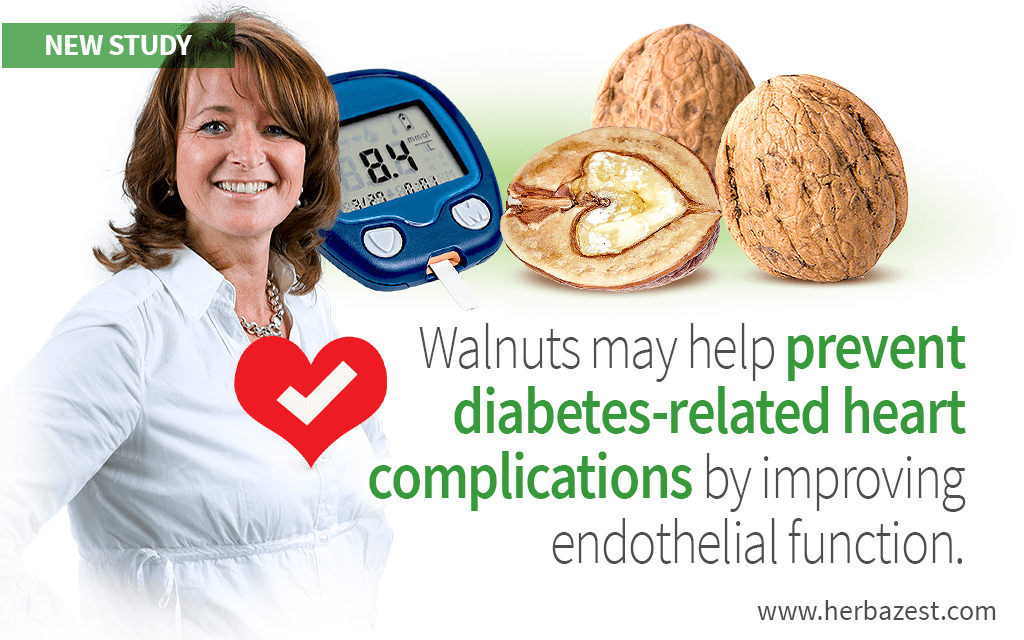 Walnuts Improve Endothelial Function and May Lower Cardiac Risks in Diabetics