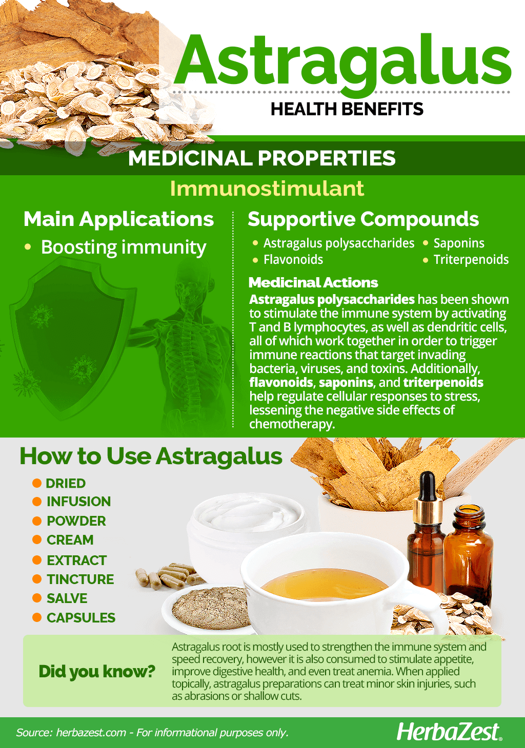 All About Astragalus
