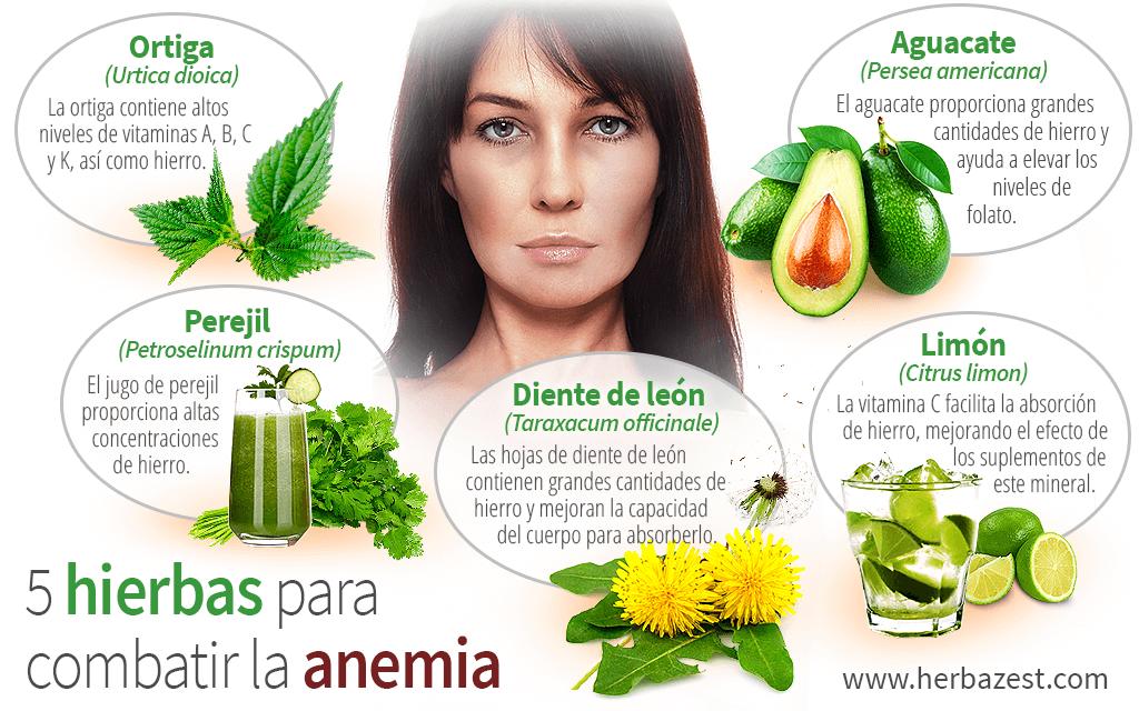 5 hierbas para combatir la anemia