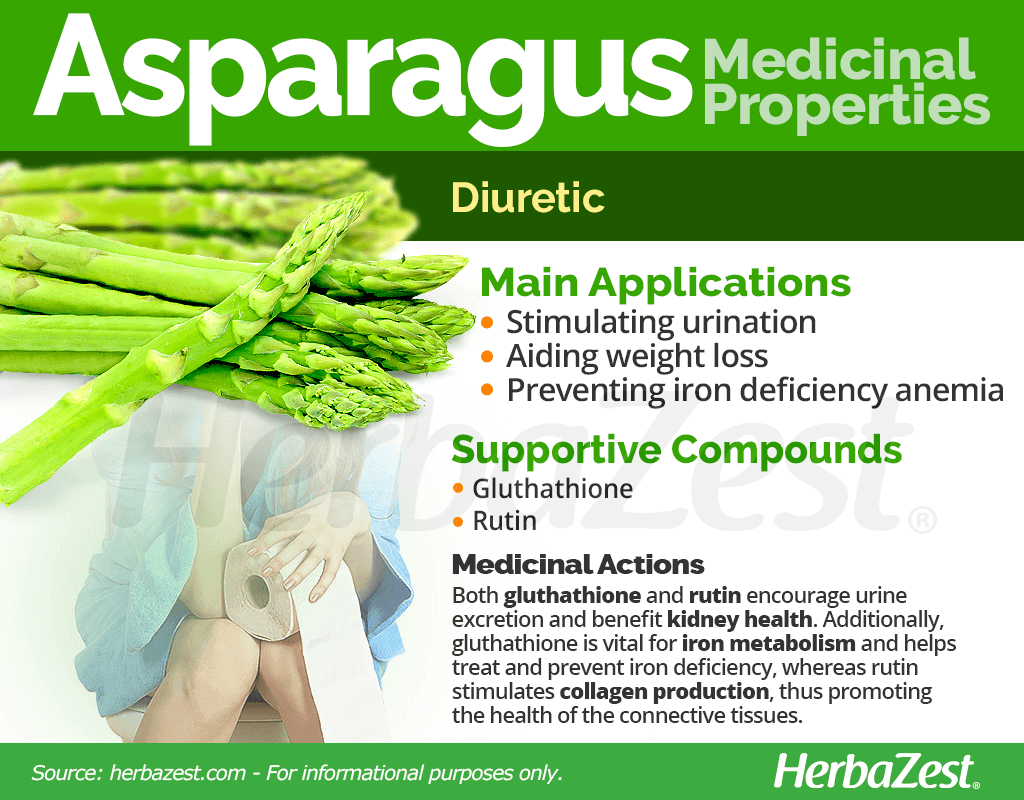 Asparagus Medicinal Properties