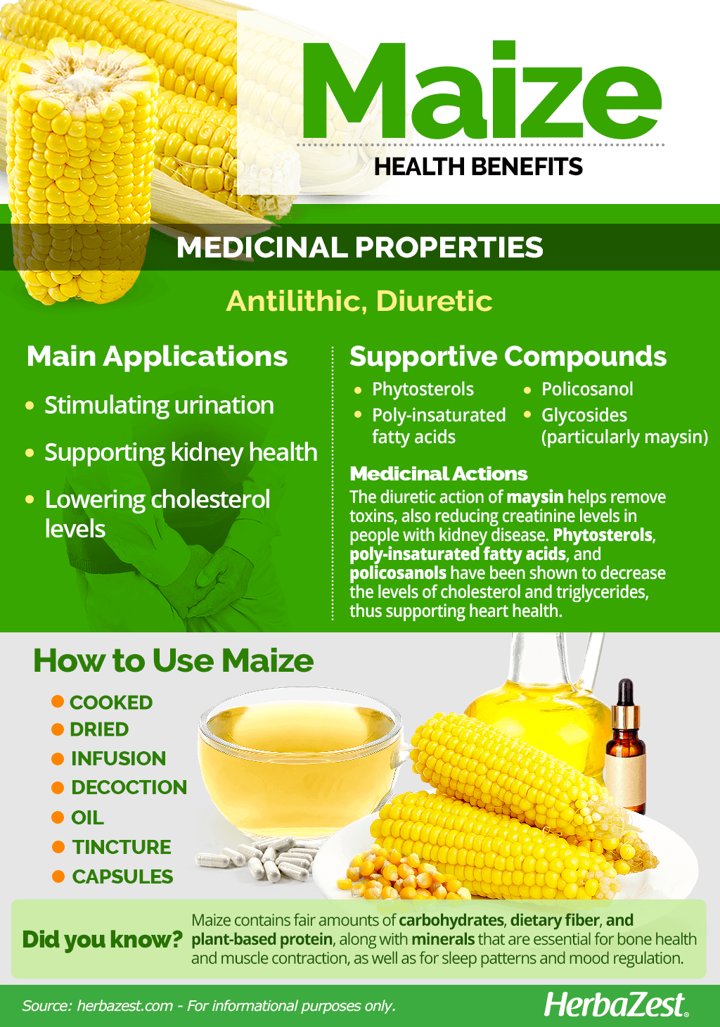 All About Maize