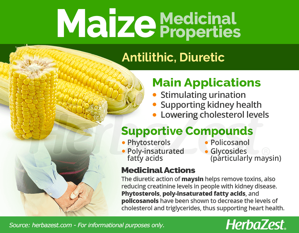 Maize Medicinal Properties