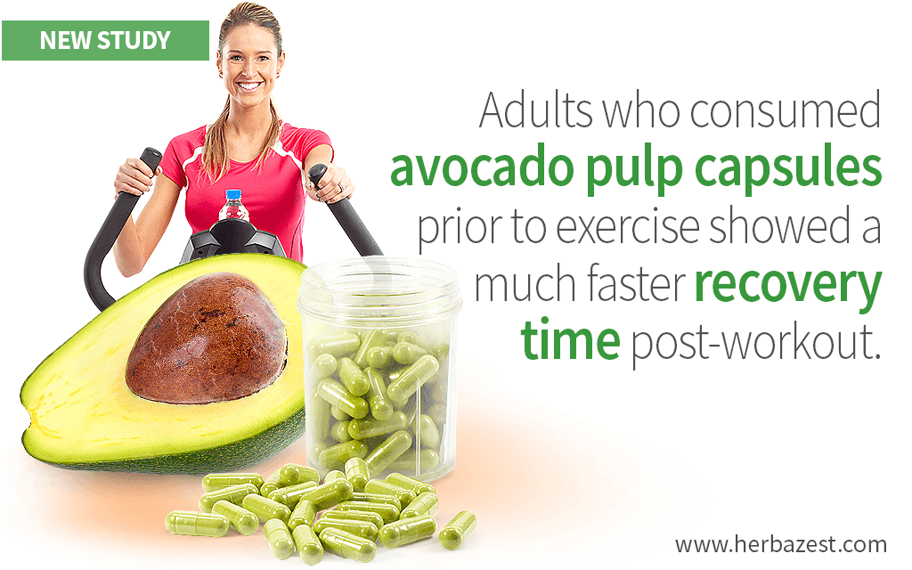 Avocado Pulp Has Shown to Improve Post-Exercise Recovery