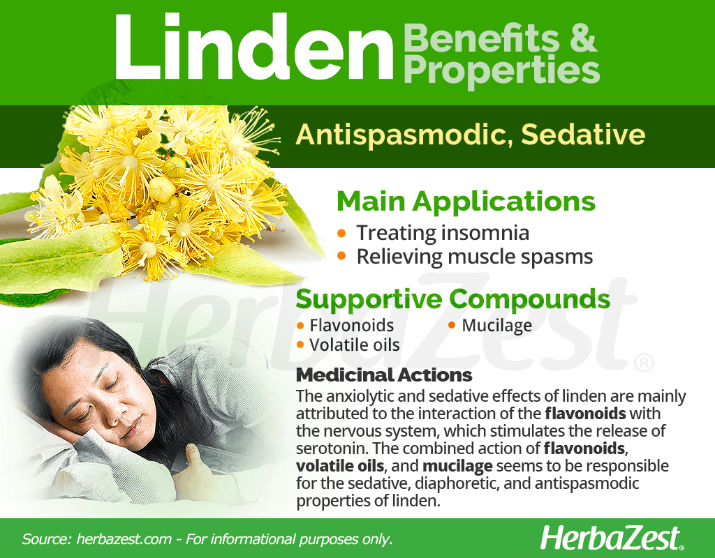 Linden Benefits and Properties