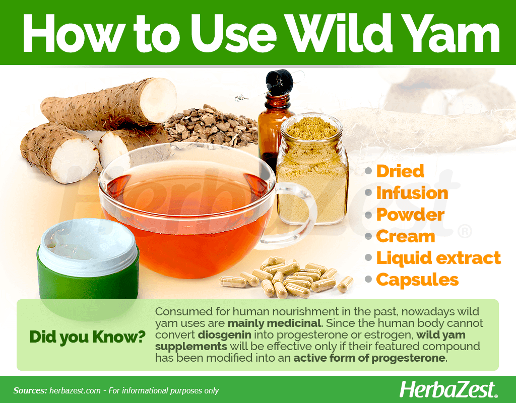 How to Use Wild Yam