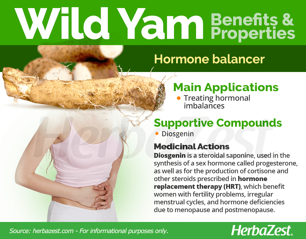 Wild Yam Benefits and Properties