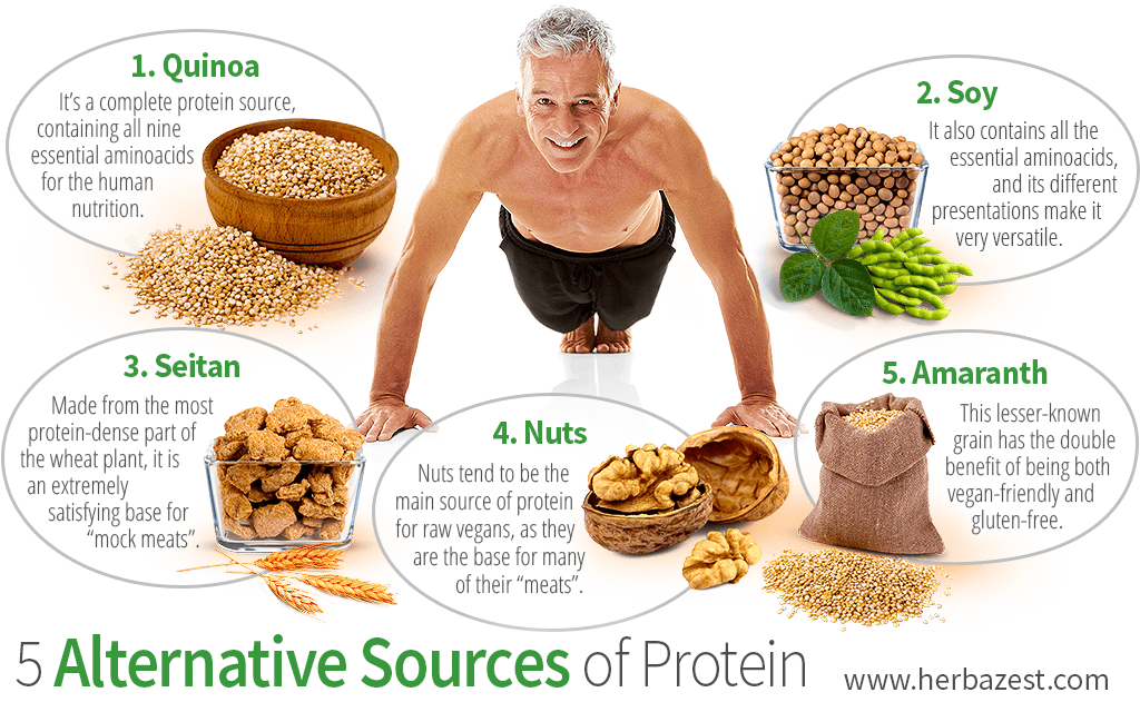 5 Alternative Sources of Protein