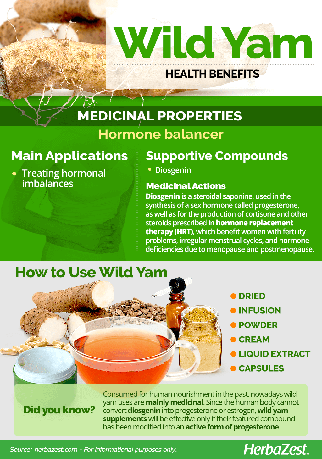 All About Wild Yam