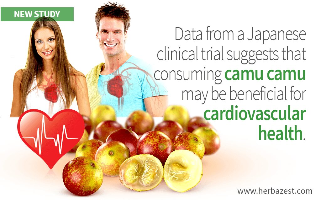 Camu Camu May Have a Positive Influence over Cardiovascular Health