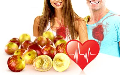 Camu Camu May Have a Positive Influence over Cardiovascular Health
