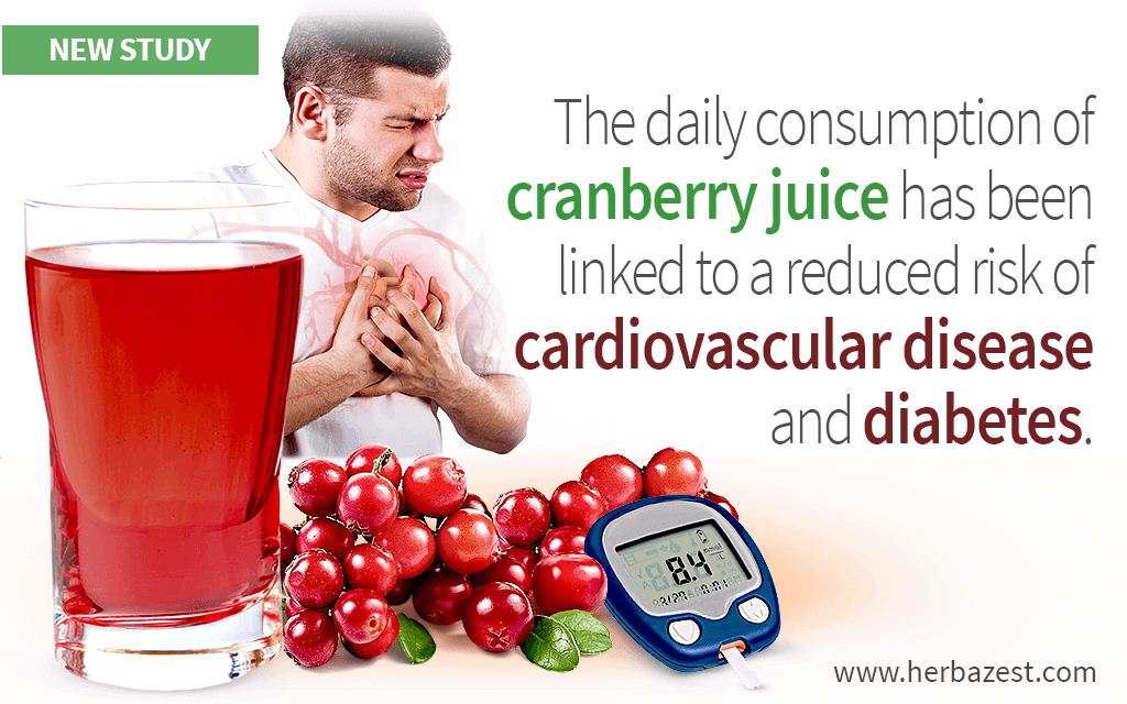 Cranberry Juice Helps Reduce Cholesterol and Improves Glucose Metabolism, Study Reveals