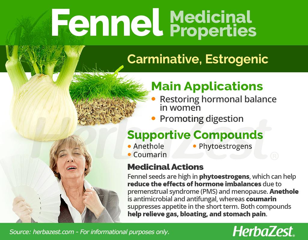 Fennel Medicinal Properties