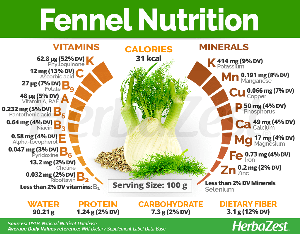 Fennel Nutrition
