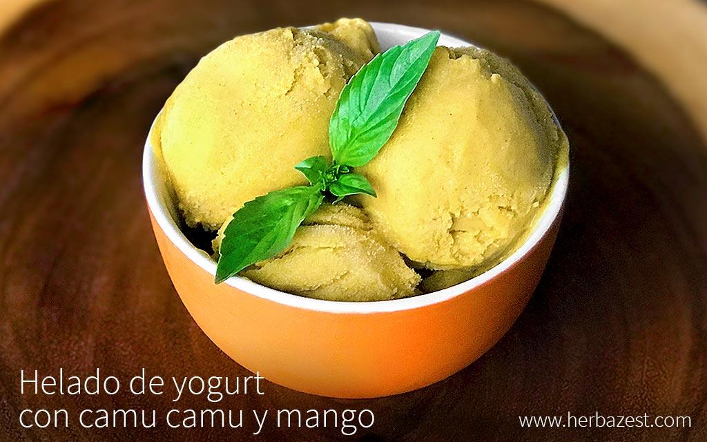 Helado de yogurt con camu camu y mango