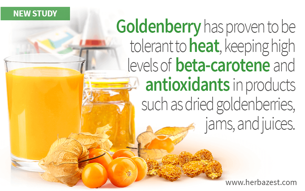 Goldenberry Health Benefits Preserved After Heat Exposure, Study Reveals