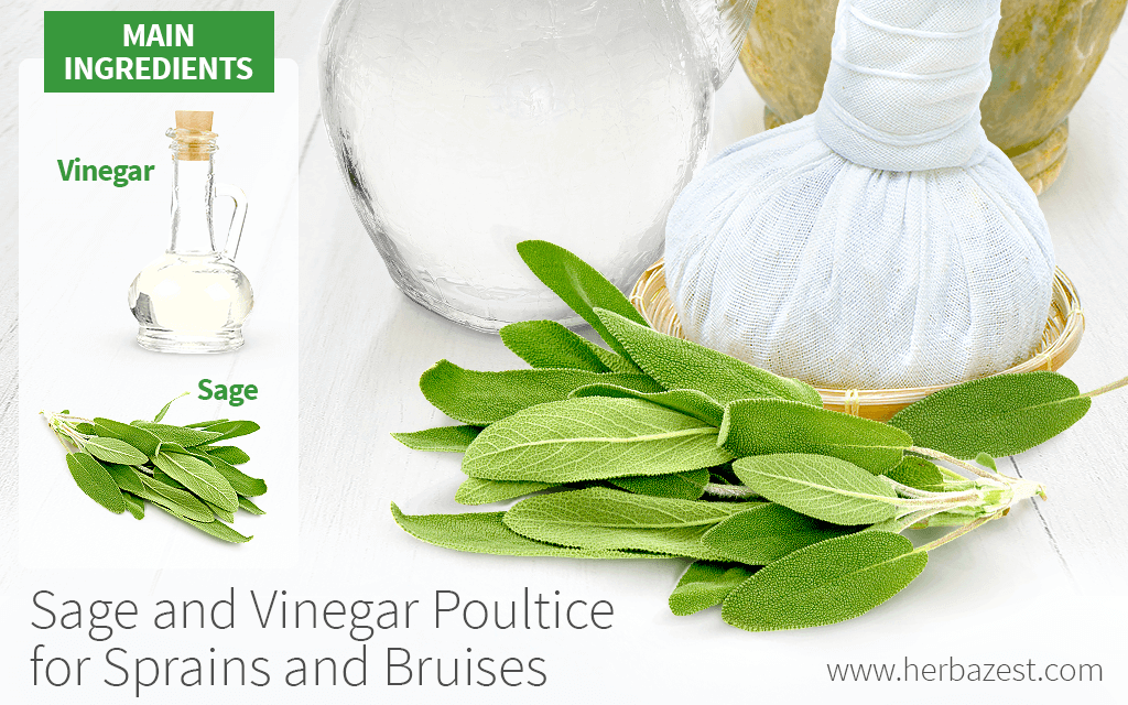 Sage and Vinegar Poultice for Sprains and Bruises