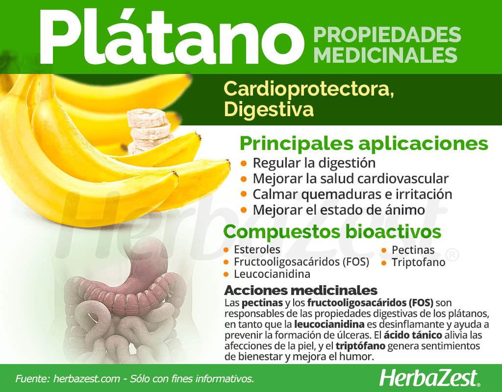 Plátano Propiedades Medicinales