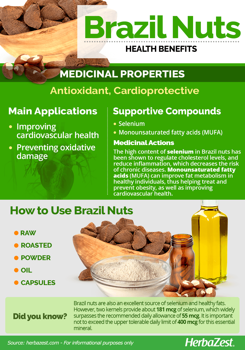All About Brazil Nuts