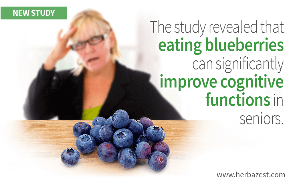The study revealed that eating blueberries can significantly improve cognitive functions in seniors