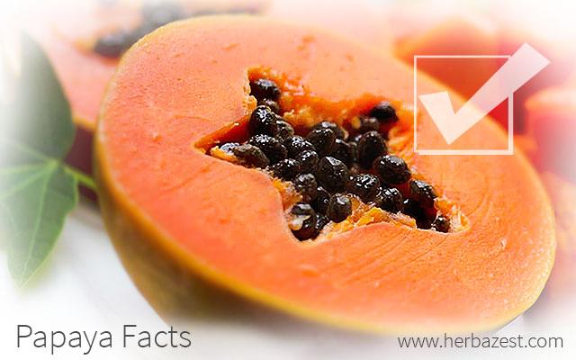 Papaya Facts
