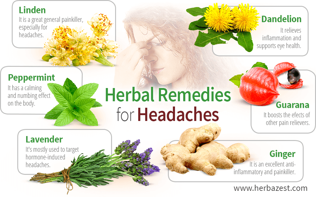 Herbal Remedies for Headaches