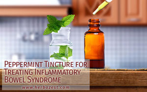 Peppermint Tincture for Treating Inflammatory Bowel Syndrome