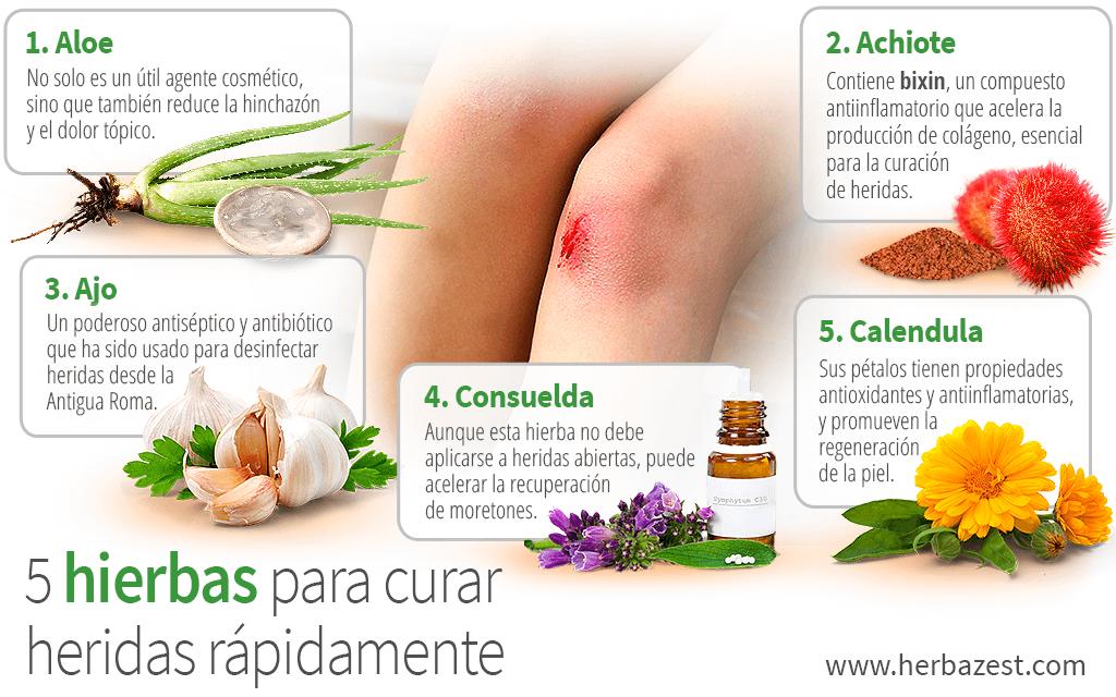 5 hierbas para curar heridas rápidamente