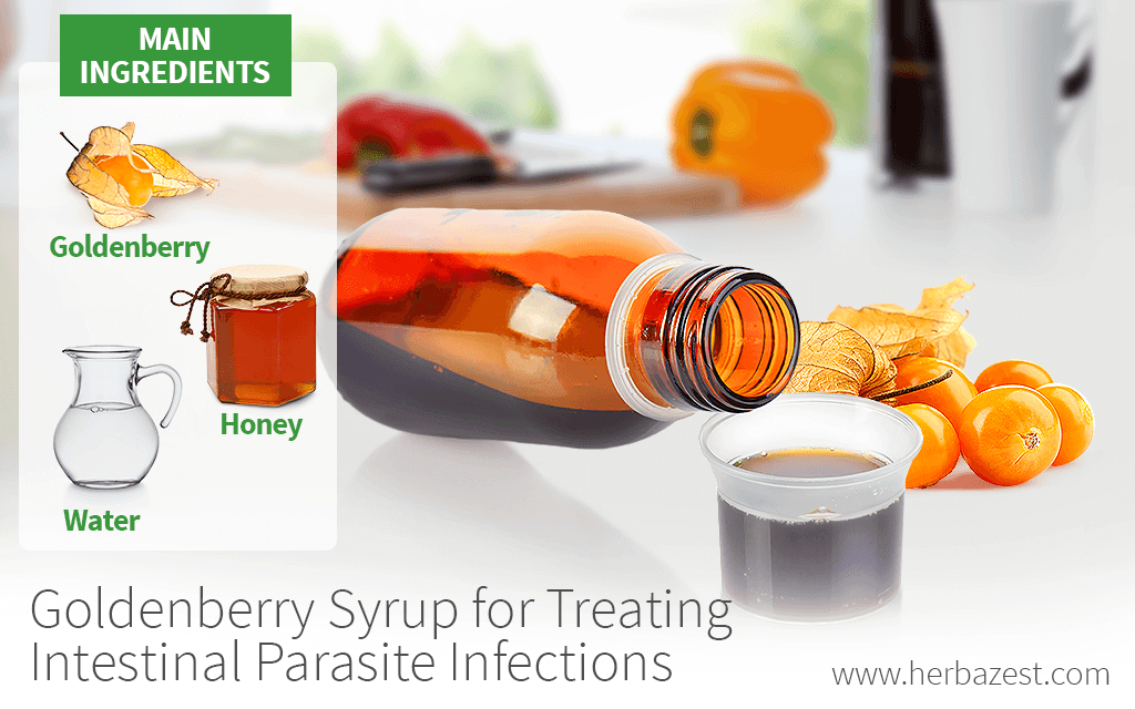 Goldenberry Syrup for Treating Intestinal Parasite Infections