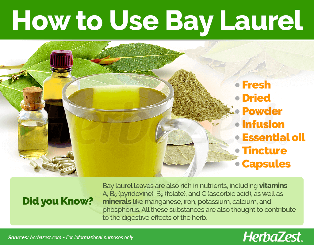 How to Use Bay Laurel