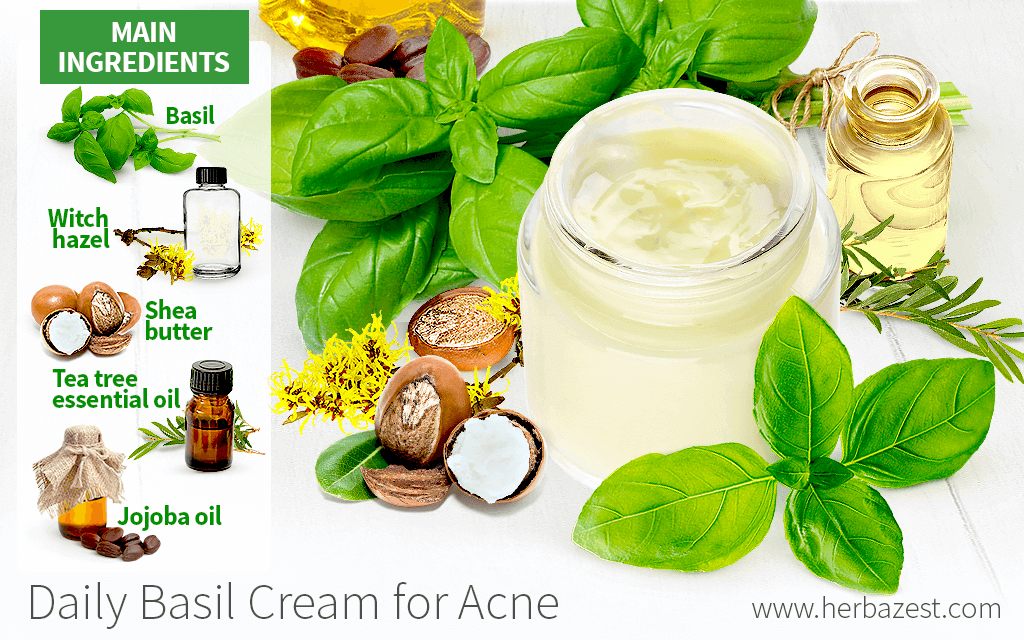 Daily Basil Cream for Acne