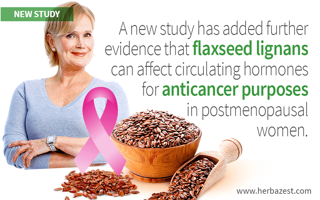Flaxseed Lignans' Potential for Breast Cancer Prevention Further Investigated by Study