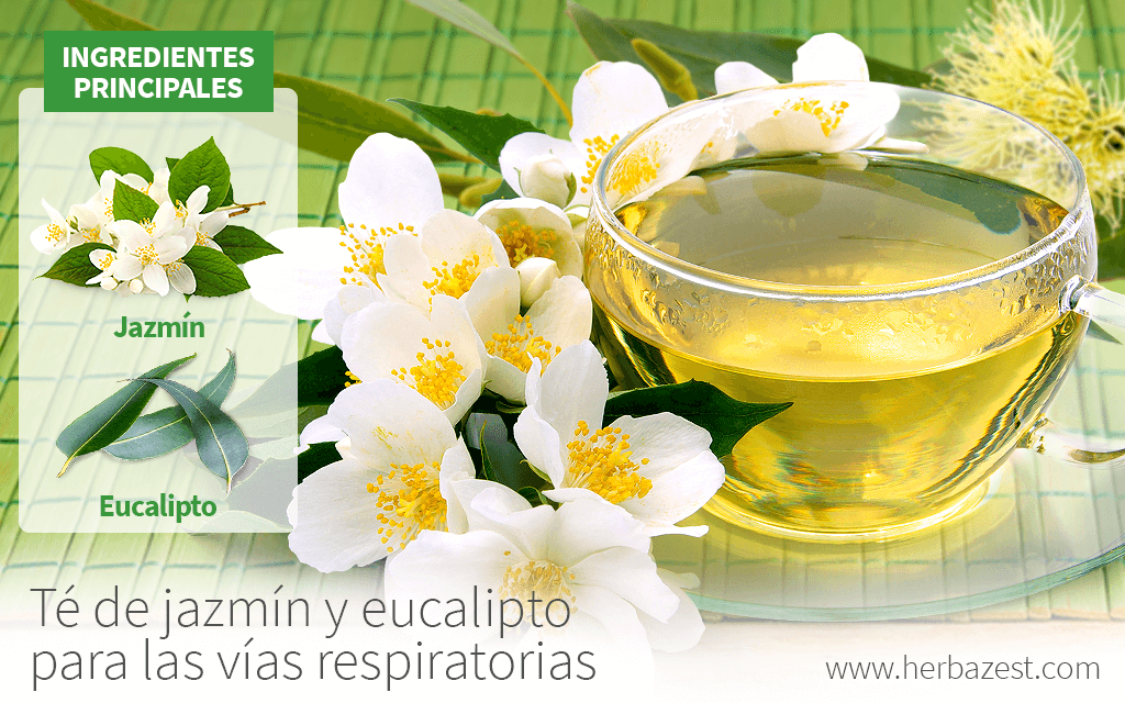 Té de jazmín y eucalipto para las vías respiratorias