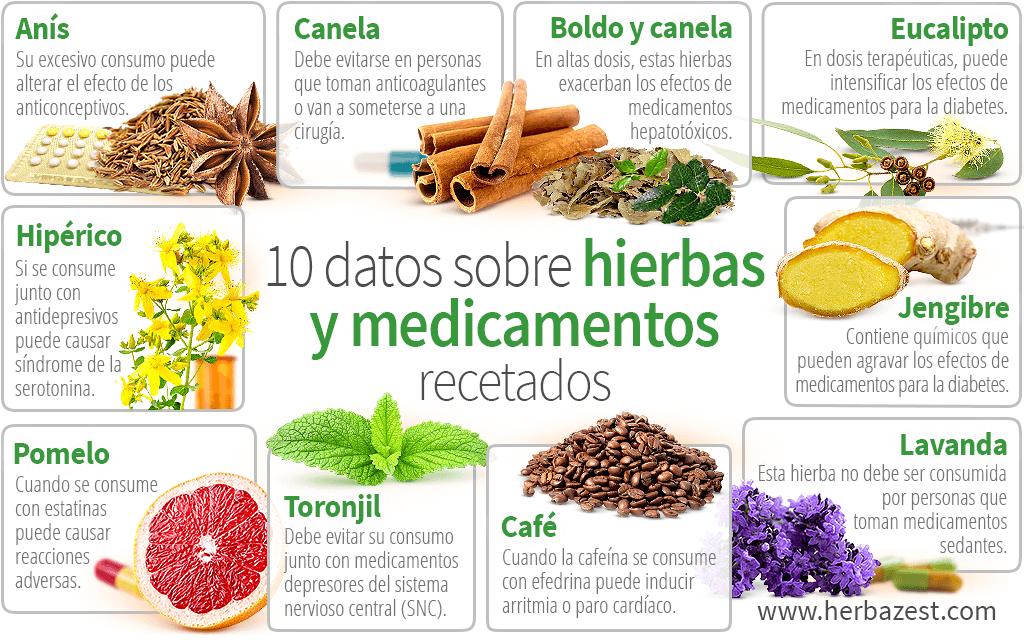10 datos sobre hierbas y medicamentos recetados