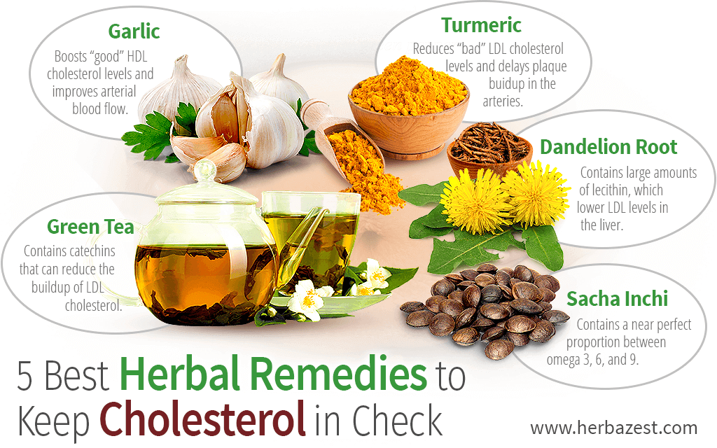5 Best Herbal Remedies to Keep Cholesterol in Check