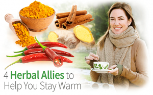 4 Herbal Allies to Help You Stay Warm