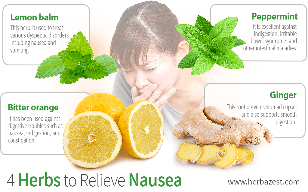 4 Herbs to Relieve Nausea