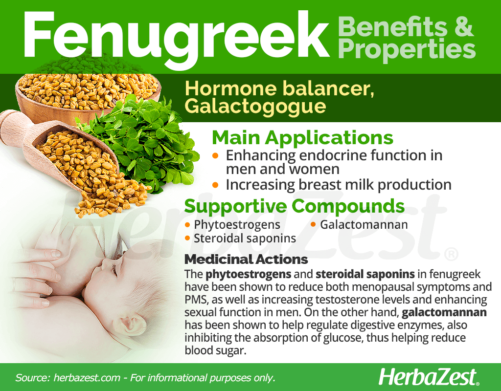 Fenugreek Benefits and Properties