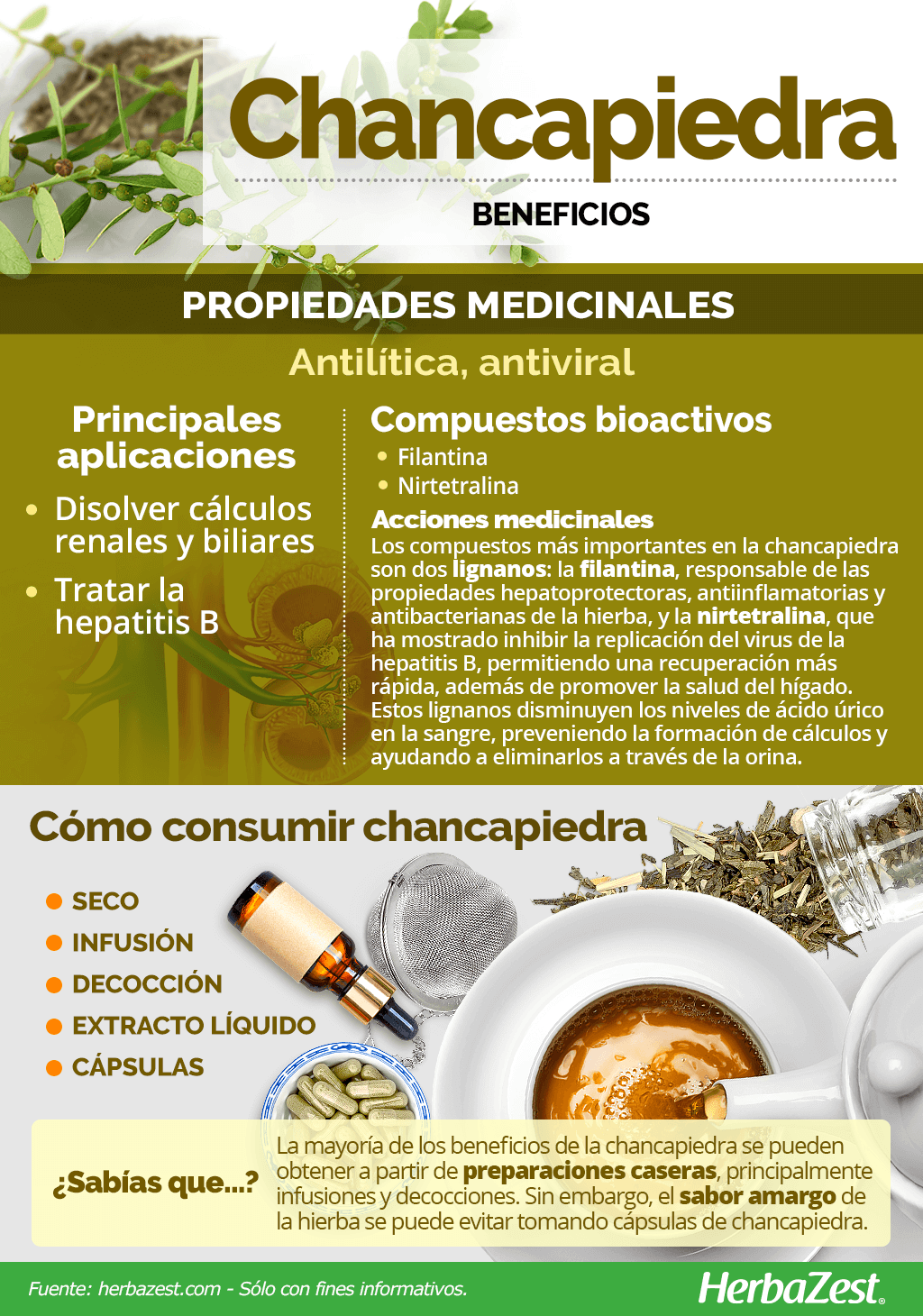 Beneficios de la chancapiedra