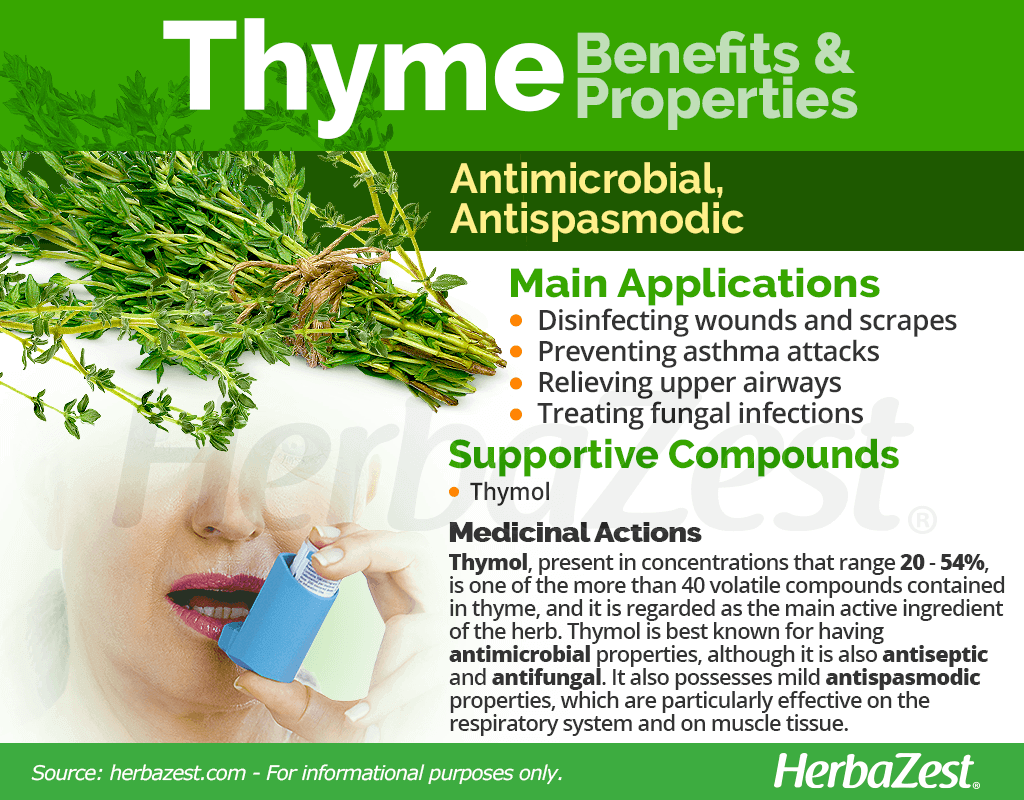 Thyme Benefits and Properties