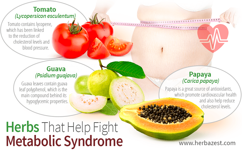 Herbs That Help Fight Metabolic Syndrome