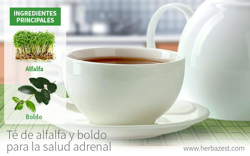 Té de alfalfa y boldo para la salud adrenal