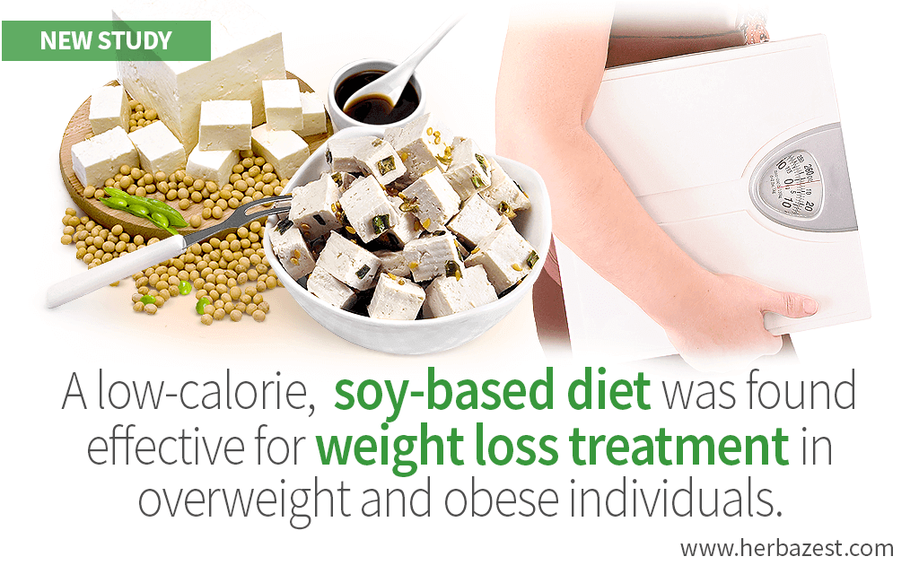 Soy-Based Diet Promotes Weight Loss in Overweight and Obese People